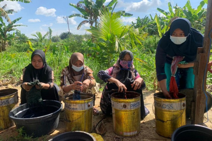 BRGM South Kalimantan encourages MSME in peat areas