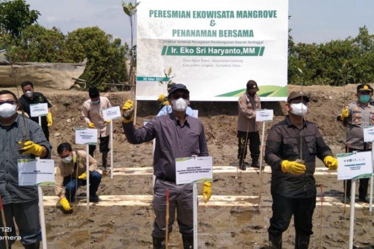 Kabupaten Langkat akan semakin hijau dengan tanaman hutan mangrove