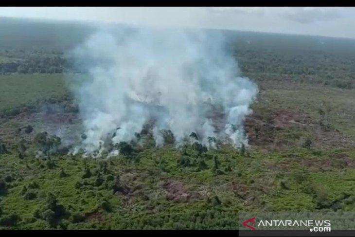 Polda Jambi kerahkan personil padamkan api di Parit Pudin Tanjab Barat