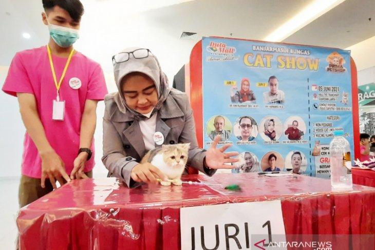 drh Rini Fajarwati: Kucing lokal juga tak kalah cantik