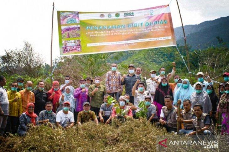 Hari Lingkungan Hidup Sedunia, Pemkab Tapsel tanam ribuan pohon durian