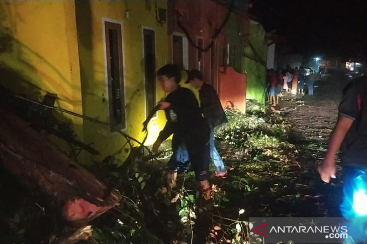 Sejumlah pohon tumbang dan rumah rusak akibat hujan disertai angin kencang di Sukabumi