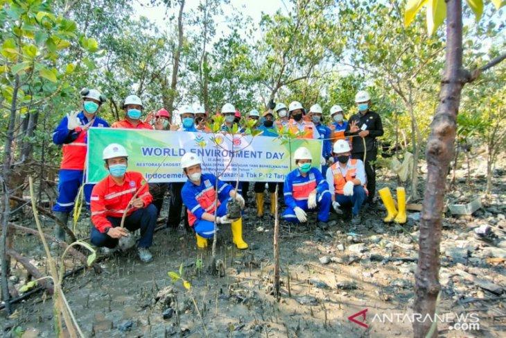 Indocement tanam 100 bibit pohon di area mata air Cikukulu Bogor