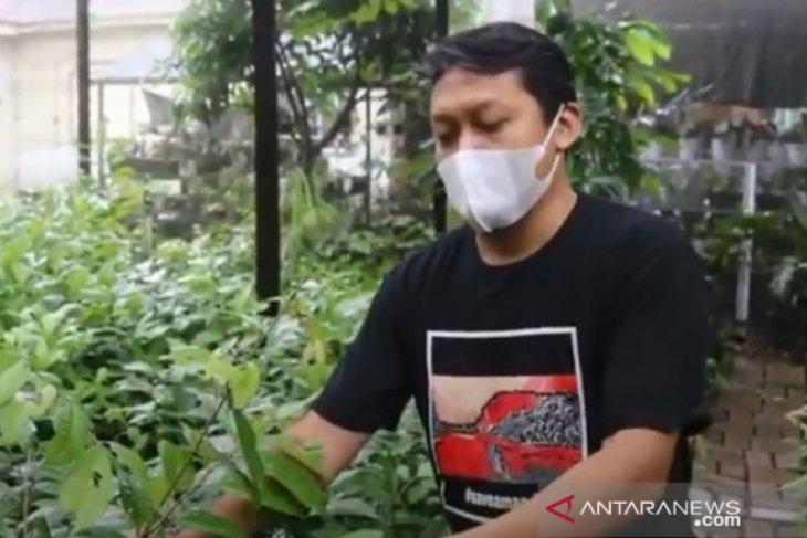 Hanif bangun perpustakaan pohon dan pembibitan tanaman langka Kalimantan