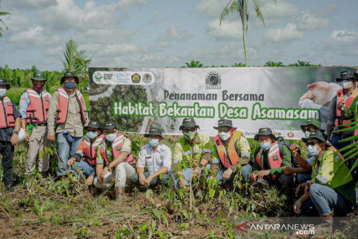 Arutmin Hadirkan Bekantan Ecopark Asamasam