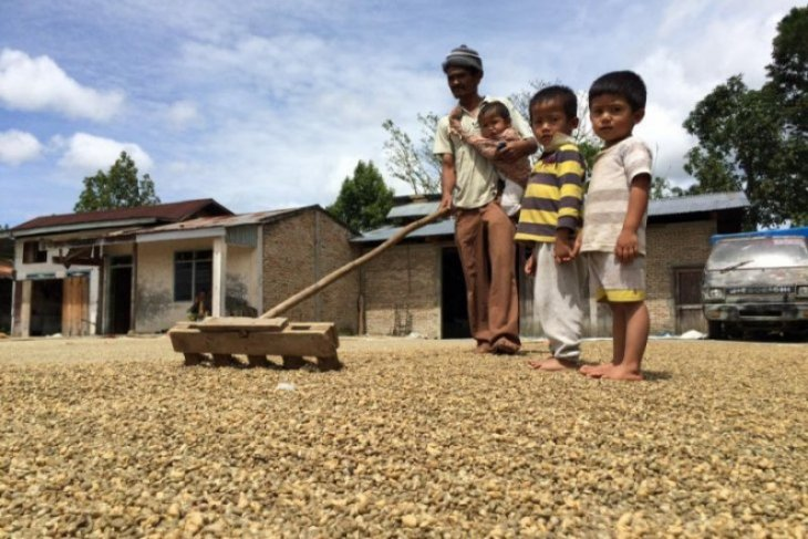 Ekspor kopi Sumut baru 90,989 juta dolar AS