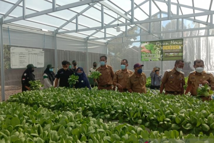 Menciptakan petani milenial sejak sekolah