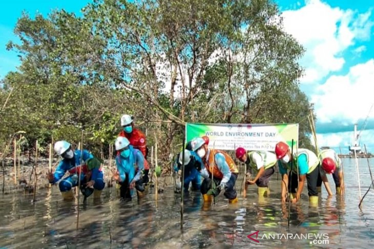 Indocement consistently protect environment
