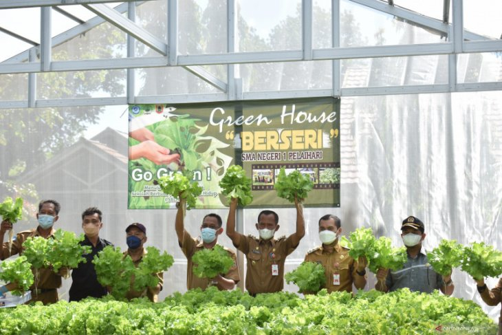 Bupati-wabup panen perdana tanaman hydroponik di SMAN 1 Pelaihari