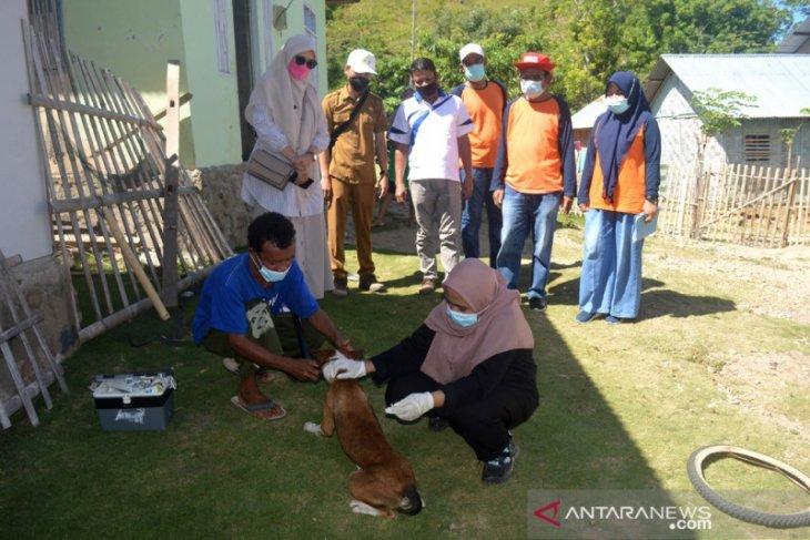 Dinas Peternakan Bone Bolango vaksinasi rabies anjing peliharaan warga