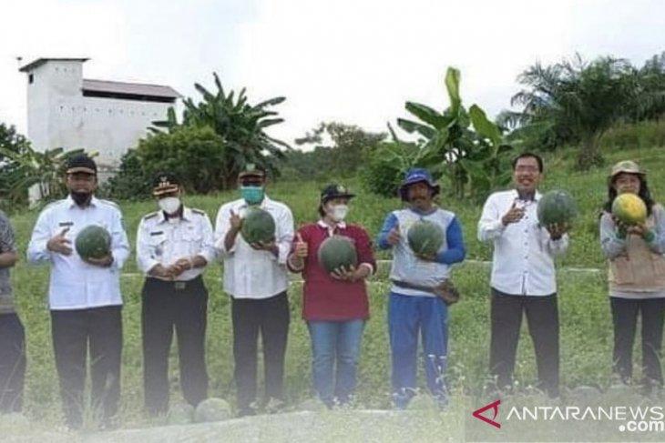DPTPH Kaltim dorong kegiatan pertanian keluarga