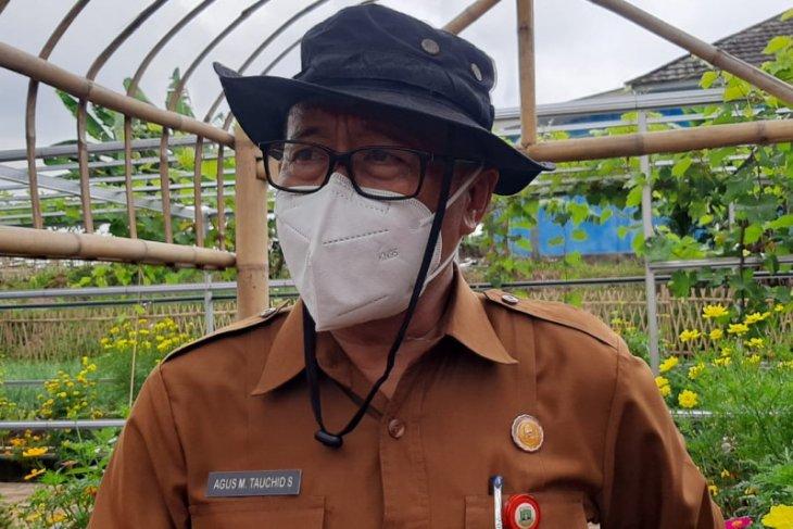 Pemprov Banten salurkan pupuk subsidi di delapan kabupaten/kota
