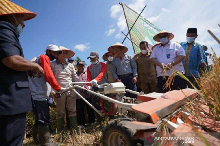Pemprov Bengkulu dorong ketahanan pangan ditengah pandemi