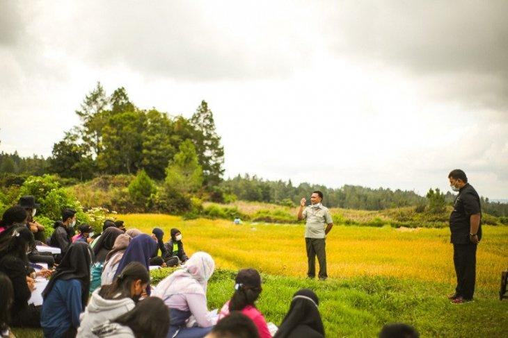 Mahasiswa  Polbangtan dampingi petani di Kawasan Food Estate