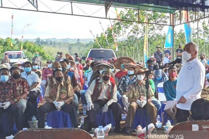 Gubernur Kaltim: Tanah di Kubar cocok untuk perkebunan