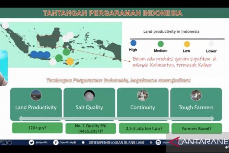 KKP dorong Perusda Kalbar ambil peran dalam ekosistem bisnis garam