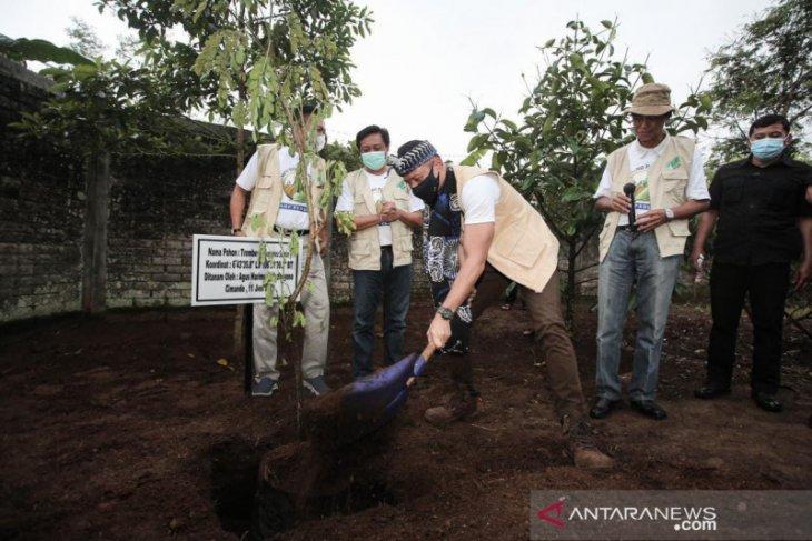 Ketum Demokrat AHY dorong generasi muda majukan sektor pertanian Indonesia
