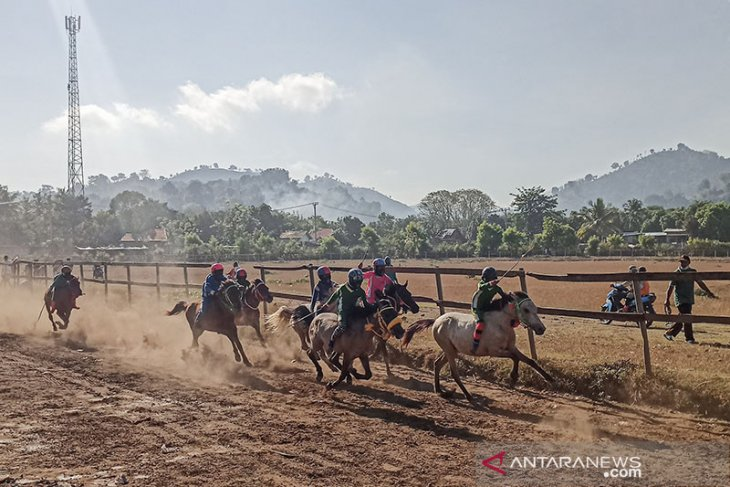 Uno vows to develop Bima's horse racing as part of tourist attractions