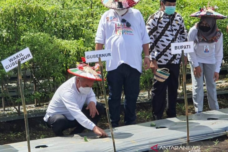 Pemprov Kaltim serahkan bantuan senilai Rp1,3 M untuk pertanian  Kutai Barat