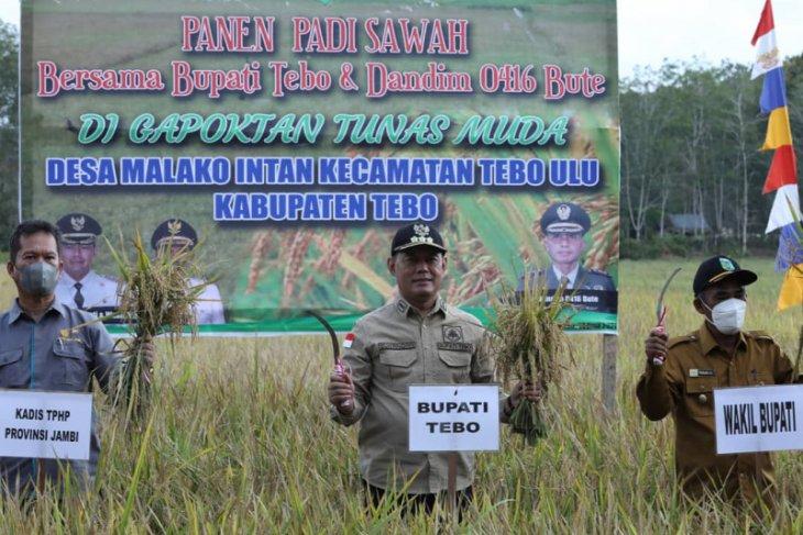 Optimistis iringi panen bersama padi sawah di Malako Intan Tebo