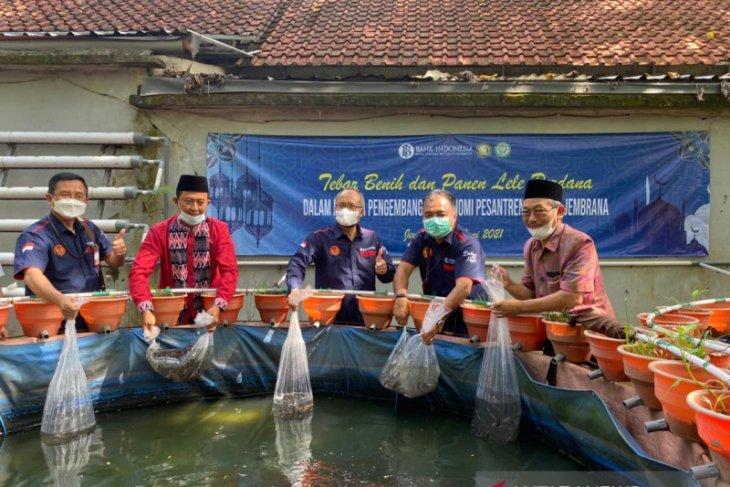 BI Bali dukung budidaya lele dan usaha roti oleh pesantren di Jembrana