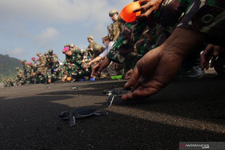 Pelepasliaran Tukik Marinir Indonesia-Amerika