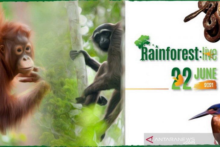 BNF to hold online program Rainforest Live on June 22