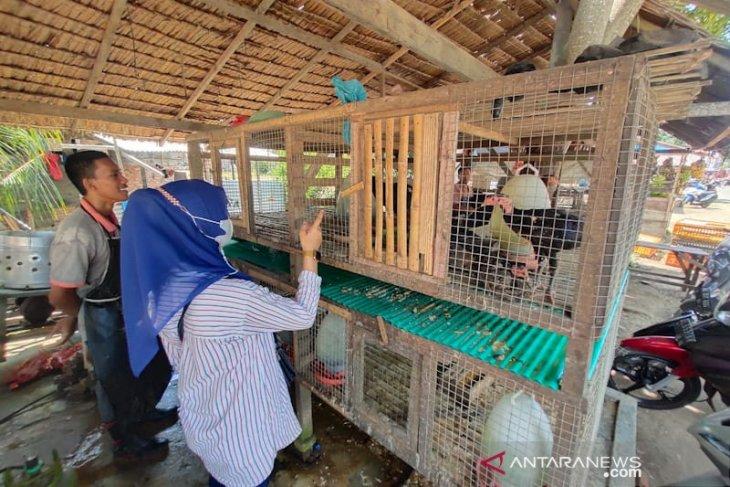 Jelang Idul Adha, harga daging stabil di Aceh Timur
