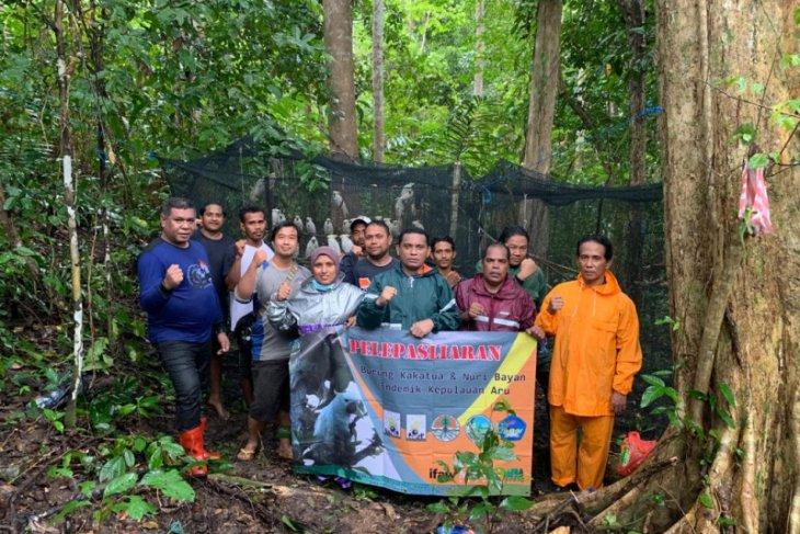 150 satwa endemik burung dan reptil dilepasliarkan di hutan Kepulauan Aru