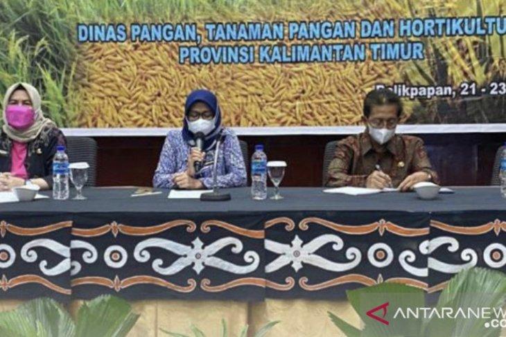 DPTPH Provinsi Kaltim kembangkan padi varietas unggul