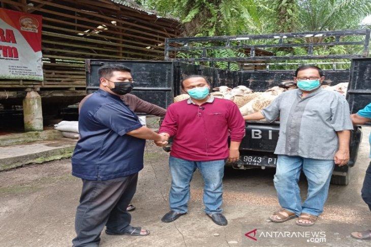 2.000 domba kurban warga Singapura-Malaysia-Brunai dibagikan di Sumut