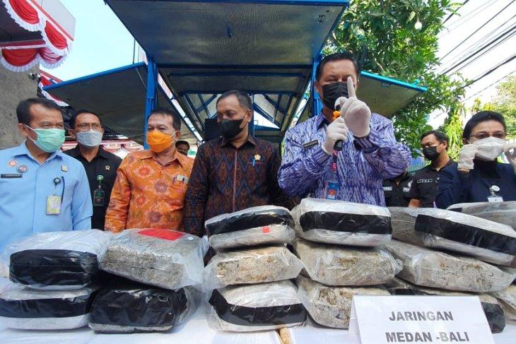 BNNP Bali musnahkan 48 kg ganja