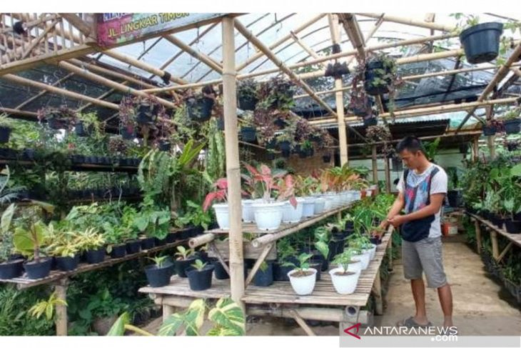 Pedagang bunga alami penurunan penjualan tiga bulan terakhir