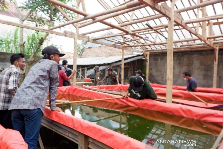 Ciptakan Lapangan Kerja, Pertamina Gelar Pelatihan Budidaya Ikan Lele di Tasikmalaya
