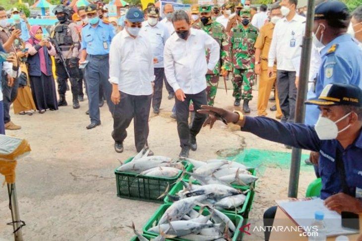 Menteri KKP lihat potensi sektor perikanan dan rumput laut Tual