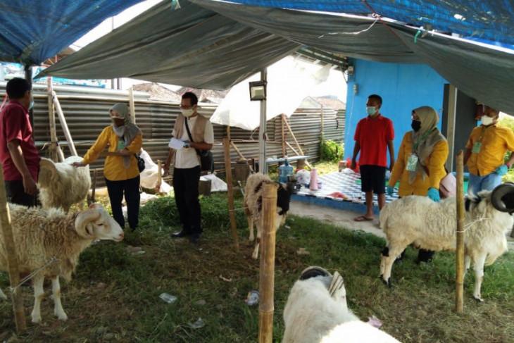 Distan Banten periksa kesehatan hewan kurban dan prokes pedagang