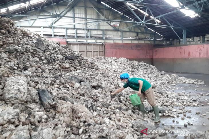 Pabrik karet di Kalbar saat ini kekurangan bahan baku sekitar 50 persen
