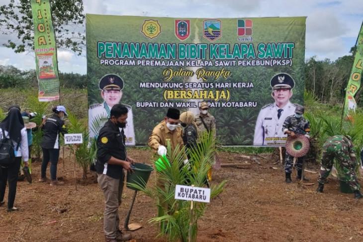Bupati Kotabaru dorong petani terapkan praktek kelapa sawit berkelanjutan