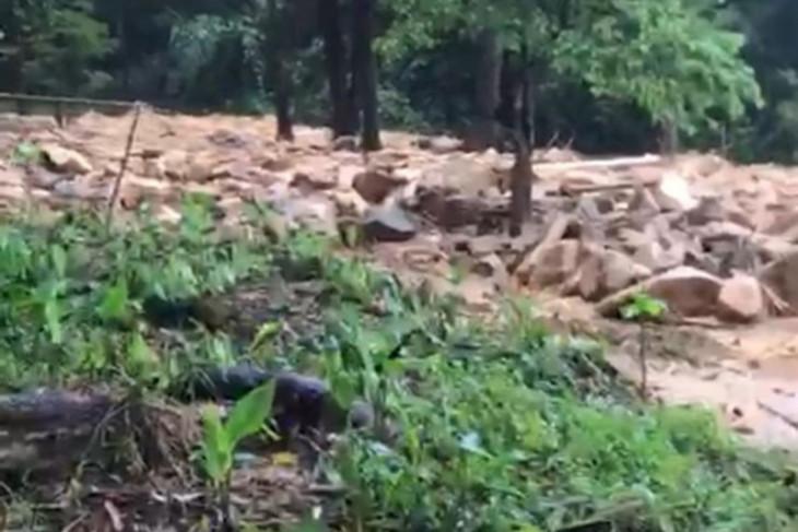 Sekeluarga penunggu durian tertimpa longsor di Sukadana, satu tewas
