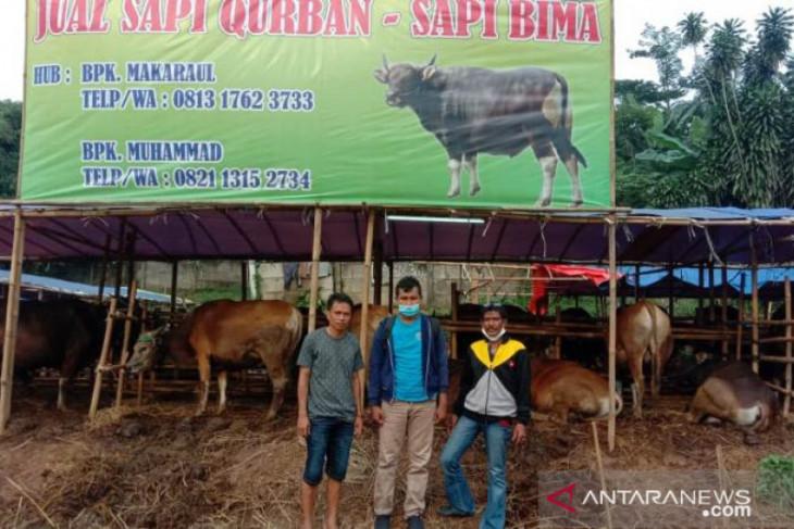 Penjualan hewan kurban di Depok menurun