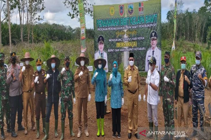 Bupati Kotabaru hadiri program peremajaan kelapa sawit