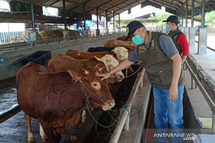 Kabupaten Bekasi kerahkan petugas untuk periksa kesehatan hewan kurban