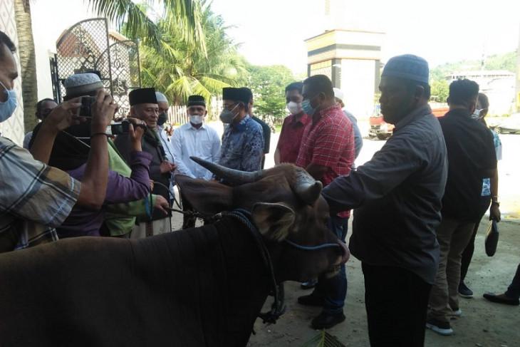 DPRD Maluku serahkan hewan kurban ke Masjid Al Fatah Ambon begini penjelasannya