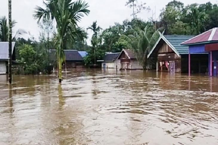 Wilayah pedalaman Kotawaringin Timur  dilanda banjir