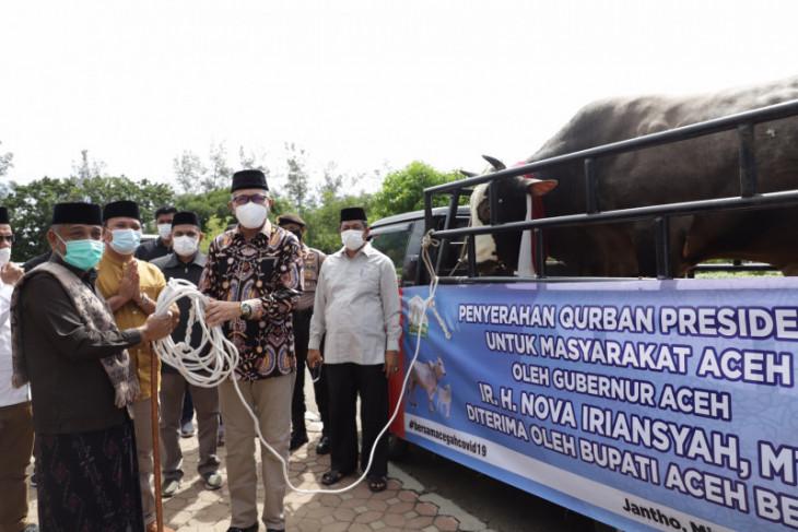 Presiden Jokowi kurban sapi seberat 1,2 ton untuk Aceh Besar