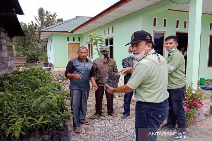 TPL serahkan bantuan bibit alpukat  di Sipahutar Taput