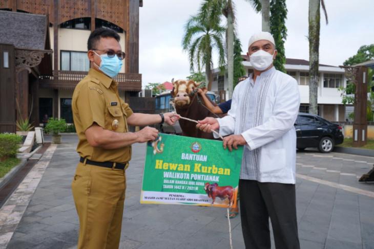 Pemerintah Kota Pontianak sebar 12 ekor sapi kurban