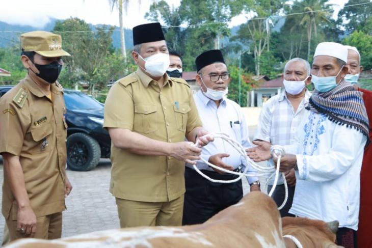 Bupati Dairi serahkan 1 hewan kurban ke Desa Pasi