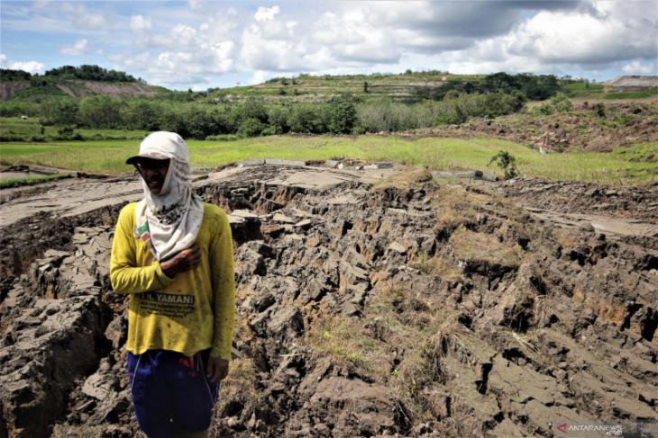 DLH Tapin belum bisa pastikan penyebab tanah bergerak yang hancurkan lahan pertanian