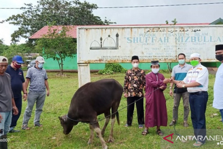 Kejati Maluku salurkan hewan kurban kepada Ponpes dan masjid begini penjelasannya